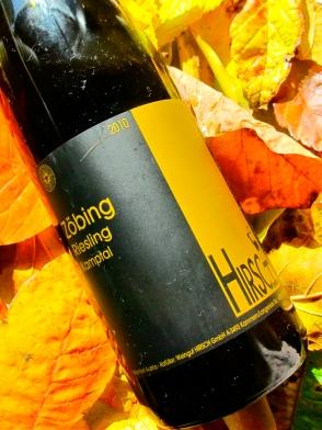 wine, label, kamptal, austria