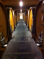 The cellar at Produttori del Barbaresco