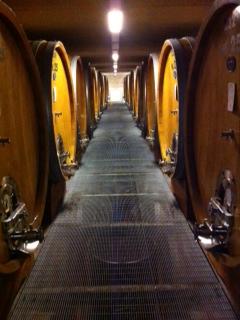 The cellar at Produttori del Barbaresco