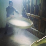 Watching the rice being filtered at Ferron, Pila Vecia