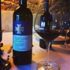 Flaccianello 2000 100% Sangiovese. Incredible wine discovered in the depths of Ettore's cellar en route to Sienna