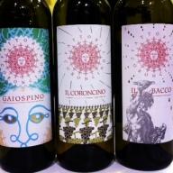 Inspiring Verdicchio by organic producer, Fattoria Coroncino