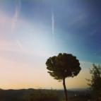 Beautiful Chianti Classico